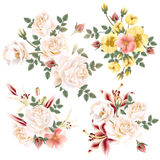 Collection of realistic  flowers roses and lilies Royalty Free Stock Image