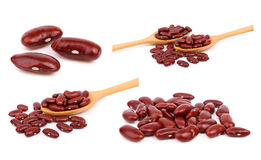 Collection of Red bean isolated on white royalty free stock photography
