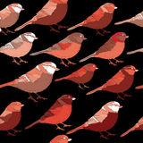 Collection of red birds looking to the right. Vector illustration on black background. Hand drawn collection of red birds on black background royalty free illustration