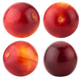 Collection of red cherry plums isolated on the white background Stock Images