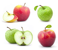 Collection of red and green apples Royalty Free Stock Images