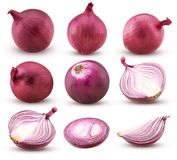 Collection red onion with slices and cut in half vector illustration
