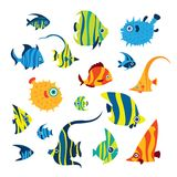 Collection of reef fish. Collection of cartoon reef fish - angelfish, treegerfish, moorish idol, butterfly fish, balloon fish. Doodle vector illustration. Set Stock Images