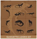 Collection reptiles and amphibians symbols set Stock Images