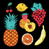 Collection of retro fruits. Vintage vector set of fruits Stock Photo