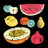 Collection of retro fruits. Vintage vector set of fruits Royalty Free Stock Images