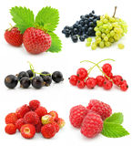 Collection of ripe berry fruits isolated