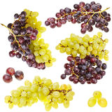 Collection of ripe fruit grape cluster Royalty Free Stock Photos