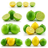 Collection of Ripe Lime and Lemon Isolated Stock Photography