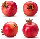 Collection ripe pomegranate fruit royalty free stock photography