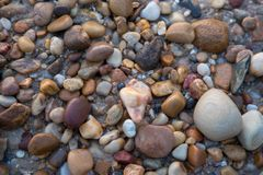 A collection of rocks on Moana Beach in South Australia. Differnt rocks scattered on Moana Beach in South Australia Royalty Free Stock Photo
