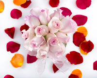 Collection of rose petals with a vase of pink roses in the middl Royalty Free Stock Photography