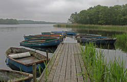 Collection of rowing boats on a lake. Royalty Free Stock Image