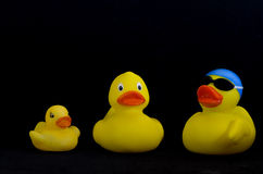Collection of rubber duckies Royalty Free Stock Photo