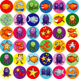 Collection of sea life Stock Image