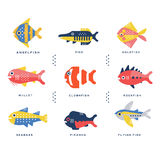 Collection of sea and ocean fish and lettering name in English vector Illustrations. On a white background Royalty Free Stock Photography