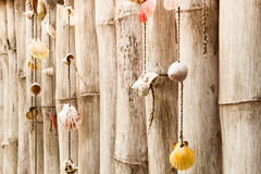 Collection of sea shells on bamboo wall in vintage Royalty Free Stock Photo