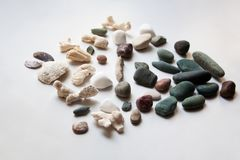 Collection of sea stones, shells and corals royalty free stock images