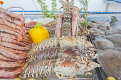 Collection of seafood on display in a restaurant Stock Photo