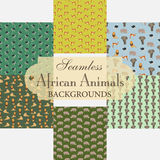 Collection of seamless backgrounds on the topic of African anima Royalty Free Stock Image