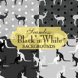 Collection of seamless backgrounds on the topic of black and white Royalty Free Stock Images