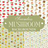 Collection of seamless backgrounds on the topic of mushrooms. Illustration Stock Photography