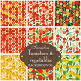 Collection of seamless backgrounds on the topic of tomato with v Stock Images
