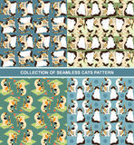 Collection of seamless cats pattern. Stock Image