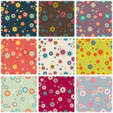 Collection of seamless colorful backgrounds with abstract flower Royalty Free Stock Image