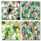 Collection of seamless tropical exotic summer patterns. Exotic summer endless backgrounds, wallpapers, fabric and other projects Stock Photos
