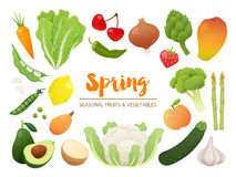 Collection of seasonal fruits and vegetables. Spring time collection. Vector EPS10 illustration. royalty free illustration
