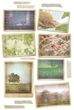Collection of seasonal photos in vintage frames. With tape Stock Photo