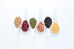 Collection set of beans Stock Photos