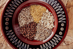 Collection Set of Cereal Grains Millet, Oat, Corn,Rice Royalty Free Stock Photos