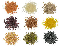 Collection Set of Grains Stock Image