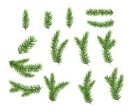 Collection Set of Realistic Fir Branches for Christmas Tree, Pine. Vector Illustration EPS10 Royalty Free Stock Photo