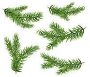 Collection Set of Realistic Fir Branches Silhouette for Christmas Tree. Pine. Vector Illustration EPS10 Royalty Free Stock Photo
