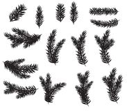 Collection Set of Realistic Fir Branches Silhouette for Christmas Tree, Pine. Vector Illustration. EPS10 Royalty Free Stock Photos