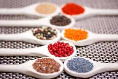 Collection set of spices with pepper corns legumes, peas Stock Photos