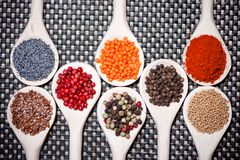 Collection set of spices Royalty Free Stock Photos