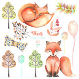 Collection, set of watercolor cute foxes and forest elements stock illustration