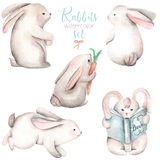 Collection, set of watercolor cute rabbits Royalty Free Stock Photo