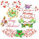 Collection (set) with watercolor floral Christmas elements of decoration Royalty Free Stock Image