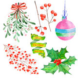 Collection (set) with watercolor floral Christmas elements of decoration vector illustration