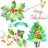 Collection (set) with watercolor floral Christmas elements of decoration Royalty Free Stock Photos