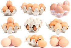 Collection sets of eggs Royalty Free Stock Photos
