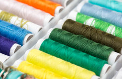 Collection of Sewing Threads Royalty Free Stock Image
