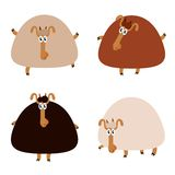 Collection of sheep Royalty Free Stock Photography