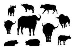 Collection of silhouette bull or buffalo vector illustration, animal logo vector vector illustration