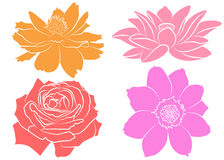 Collection of silhouette flowers. Collection of floral silhouettes, isolated on white background. Set with marigold, rose, lotus water lily and cosmos flower Stock Photography